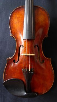 ID #319 violin William Forster